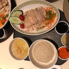 春休み/海南鶏飯/チキンライス/海外/旅行/シンガポール/... シンガポール旅行記  シンガポール名物の…
