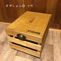 お知らせ/ワークショップ/木製ボックス/木箱/キャベツボックス ★木製ボックスを作ろう★ ワークショップ…(2枚目)