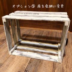 お知らせ/ワークショップ/木製ボックス/木箱/キャベツボックス ★木製ボックスを作ろう★ ワークショップ…(4枚目)