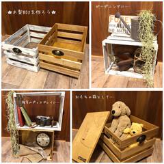 お知らせ/ワークショップ/木製ボックス/木箱/キャベツボックス ★木製ボックスを作ろう★ ワークショップ…