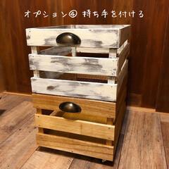 お知らせ/ワークショップ/木製ボックス/木箱/キャベツボックス ★木製ボックスを作ろう★ ワークショップ…(5枚目)
