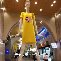夏コーデ/ファッション すっごい大きなTシャツ☆ 24時間テレビ…