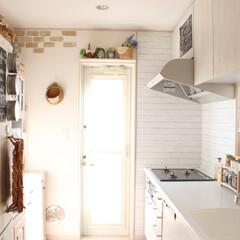 換気扇掃除/オキシクリーン/DIY/キッチン/インテリア/掃除 今日は換気扇を掃除しました♪オキシクリー…