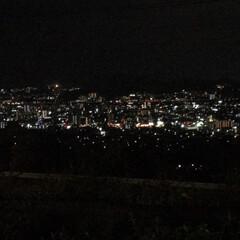 夜景 広島県 夜景 春日野