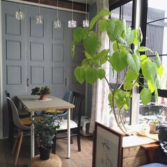 イームズチェア/ペンダントライト/北欧インテリア/カフェ風インテリア/暮らしを整える/暮らしを楽しむ/... こんばんわ☆ 先日イケアでテーブルの天板…