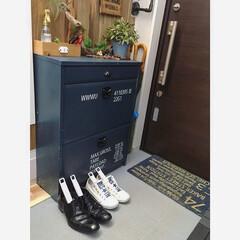 ナチュラルデオドライザー/脱臭/生活雑貨/ひなたライフ/インテリア/湿気対策/... こんばんわ☆ 毎日使っている靴。 この季…