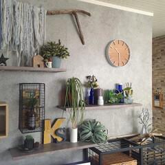 すっきり暮らしたい/暮らしを楽しむ/流木インテリア/ディスプレイ/飾り棚/フェイクグリーン/... こんにちは☺︎ リビングの掛時計を新しく…