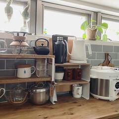 グリーンのある暮らし/カフェ風インテリア/北欧インテリア/暮らしを楽しむ/暮らしを整える/日々の暮らし/... おはようございます☺︎ キッチンに新しく…