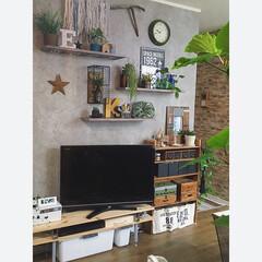 壁面収納/インテリア/グリーン/フェイクグリーン/イケア/ニコアンド/... 壁面収納の飾り棚にはフェイクのグリーンと…