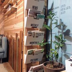 マイホーム/おうち時間/カリフォルニアテイスト/インテリアコーディネート/暮らしを楽しむ/スッキリ暮らす/... こんばんわ☆ わが家の本棚。 イケアの新…