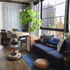 ブルックリンスタイル/カフェ風インテリア/窓枠リメイク/心地よい暮らし/セルフリノベーション/DIY/... こんばんわ☆ 最近あったかい日が続いてい…