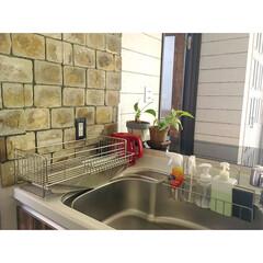 台所道具/すっきり暮らす/水切りカゴ/発泡スチロールレンガ/グリーン/キッチン雑貨/... こんにちは。 キッチンの水切りカゴを新し…
