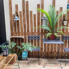 カフェ風インテリア/ガーデンライト/テラコッタ風/庭/日々の暮らし/暮らしを楽しむ/... おはようございます。 今朝もいいお天気!…
