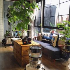 注文住宅/Living/リビング/窓枠リメイク/セルフリノベーション/DIY/... こんばんわ☆ 朝夕はめっきり寒くなってき…