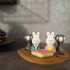 桜モチーフ/暮らしを楽しむ/インテリア/KitchenKitchen/うさぎのいる暮らし/うさぎ/... こんばんわ☆ 今年はわが家に家族が増えた…