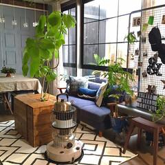 窓枠リメイク/セルフリノベーション/DIY/北欧インテリア/カフェ風インテリア/暮らしを楽しむ/... こんばんわ☆ リビングに新しく白黒のスク…