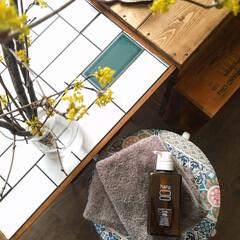 kurokamiスカルプ(シャンプー)を使ったクチコミ「こんばんわ☆ 少しづつですが、春が近づい…」