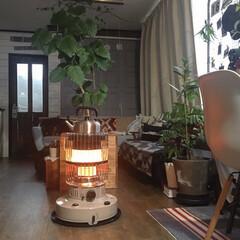 トヨトミ 石油ストーブ ラウンドダブルクリーン | TOYOTOMI(石油ストーブ)を使ったクチコミ「寒くなってくる夕方ごろからストーブを点け…」
