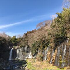 富士山🗻/白糸の滝/音止の滝/冬/おでかけ/風景 今日は晴天  母と妹と一緒に富士宮にドラ…(3枚目)