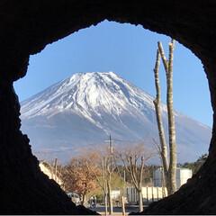 富士山🗻/あさぎりフードパーク/冬/おでかけ/風景 田貫湖こ帰りは朝霧高原へ あさぎりフード…