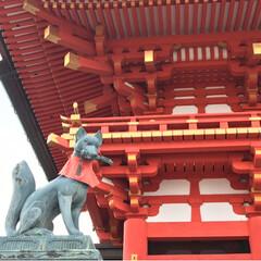 京都旅行/伏見稲荷/御香宮神社/桜🌸/LIMIAおでかけ部/おでかけ/... 3月28日、夜勤明けからの夜行バスで、娘…