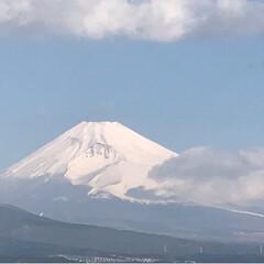 富士山🗻/小鳥/風景 今日の富士山🗻 久しぶりに富士山が見えま…