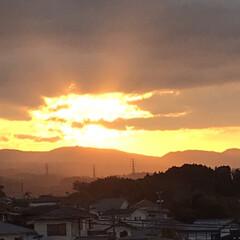 朝陽 今日の朝陽🌅 夜勤明けにひと息😊 今朝は…