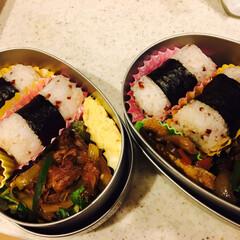 赤米/お弁当 赤米で俵おにぎりにしただけで、なんか見た…