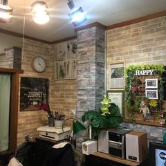 部屋鏡のある/男前リビング/猫と暮らす/照明/リビング/DIY/... 壁紙ファクトリーで購入、自分でリフォーム…