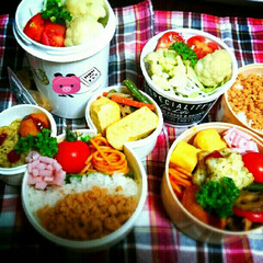 愛情/毎日/彩り/お弁当