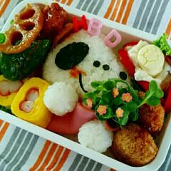 毎日/誕生日/彩り/愛情/お弁当