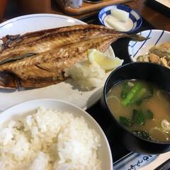 ランチ/今日のお昼ごはん/美味しい/ご飯がススムおかず/和風定食/和食/... 今日のお昼ごはん‼️ 基本的に洋食が好き…