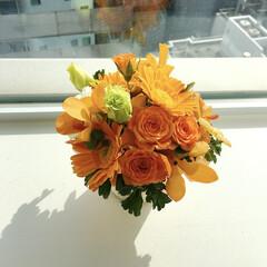 バラ/ガーベラ/元気の源/ブーケ/いい天気/花のある暮らし/... 私事ですが、今日誕生日なんです!笑😂🤭🎈…