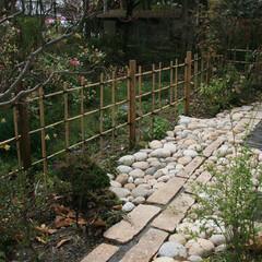 日本庭園/和庭/瓦/雑木の庭/竹垣 庭で捨てられていた古瓦を延べ段に使った和…