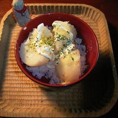 マヨネーズ/じゃがバター じゃがバターマヨネーズ丼 お試しあれ