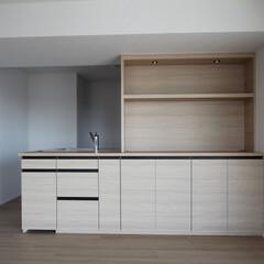 収納/施工/カウンター/アクセント/オプション キッチンカウンター収納に、入れたいものを…