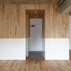 リノベーション賃貸 水廻りを囲う壁はボーダー状のデザイン