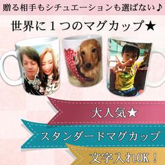 フォトマグカップ/オリジナルマグカップ/名入れマグカップ 写真、メッセージから作る世界に1つのマグ…