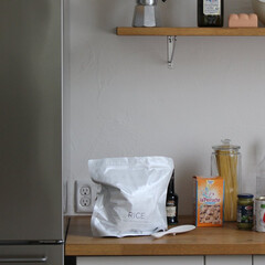 マーナ/MARNA/新生活/キッチングッズ/お米保存/暮らし お米のプロと作った「極お米保存袋」。光・…(1枚目)