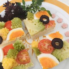 野菜サンド/オープンサンド/おウチカフェ/おうちカフェ お待たせ致しました。 こちらは野菜のオー…