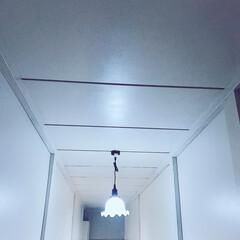 天井塗装/天井リフォーム/ミルクガラスシェード/障子リメイク/セルフリフォーム/セルフリノベ/... 🌹 ・ 中廊下 天井 2回に分けてペイン…