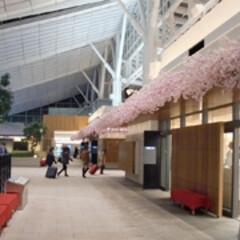 ガーデニング/アート/装飾/デコラティブ/かわいい/和風/... 屋根の袖に桜の装飾。連なりが長く圧巻です。