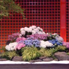 庭/ガーデニング/生花/ナチュラル/装飾/デコラティブ/... 和風の舞台に紫陽花の装飾。壺の生け込み風…