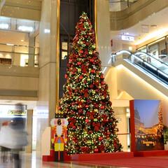 装飾/デコラティブ/暖色/赤/モダン/クラッシック/... クリスマスを彩るクラッシックな印象のビッ…