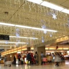 スター/LEDライト/ブルー/ロマンティック/装飾/デコラティブ/... 天井から下がる無数のイルミネーション。星…