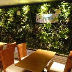庭/ガーデニング/観葉植物/ナチュラル/装飾/デコラティブ パブリックスペースの壁面緑化。自然を感じ…