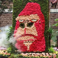 庭/ガーデニング/生花/ナチュラル/装飾/デコラティブ/... ミストを吐くお花のゴリラ。表情が演出にピ…