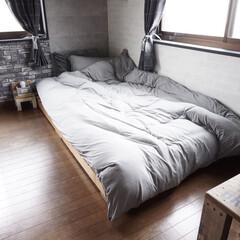 掛け布団/寝具/ニトリ/おすすめアイテム/暮らし ニトリのお値段以上アイテムのあたたかさ3…
