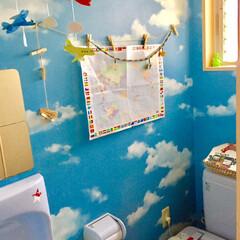 世界地図/モビール/空/飛行機/インテリア/トイレ 空の壁紙と日差しの入る明るいトイレ テー…