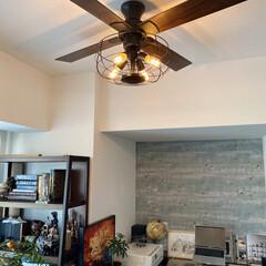 シーリングライト led 6畳 シーリングファン シーリングファンライト LED 照明 天井照明 4灯 ジャヴァロエルフ JE-CF002V 新生活 | JAVALO ELF(シーリングファン)を使ったクチコミ「ハワイのヴィラみたいな雰囲気を醸し出すシ…」(1枚目)